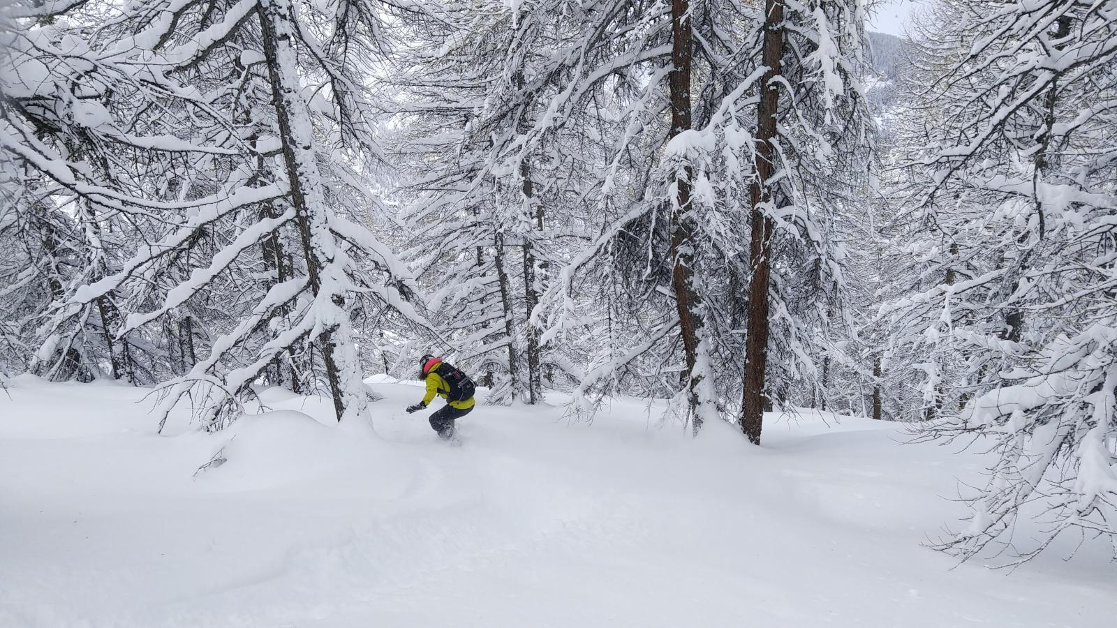cours snowboard queyras