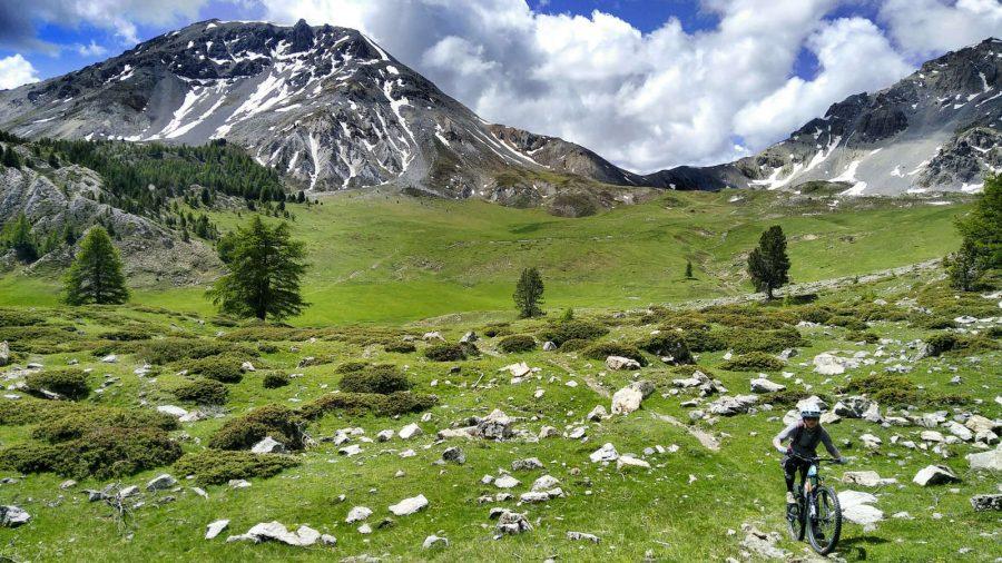 Big Mountain Tours (tout compris)